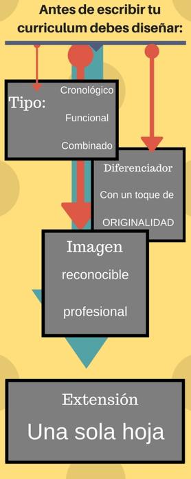 curiculum vitae infografia